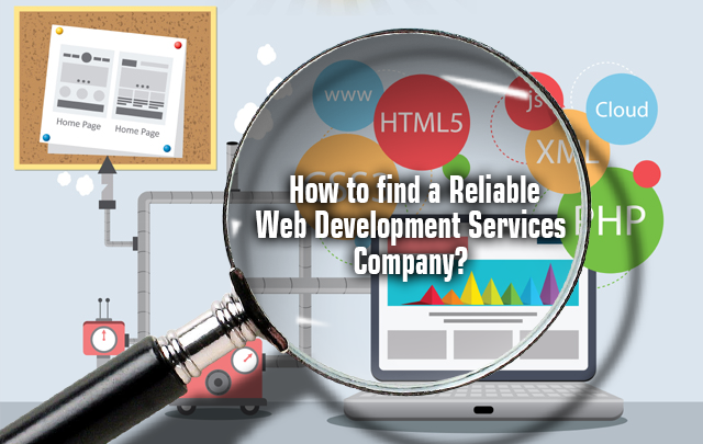 web development service company